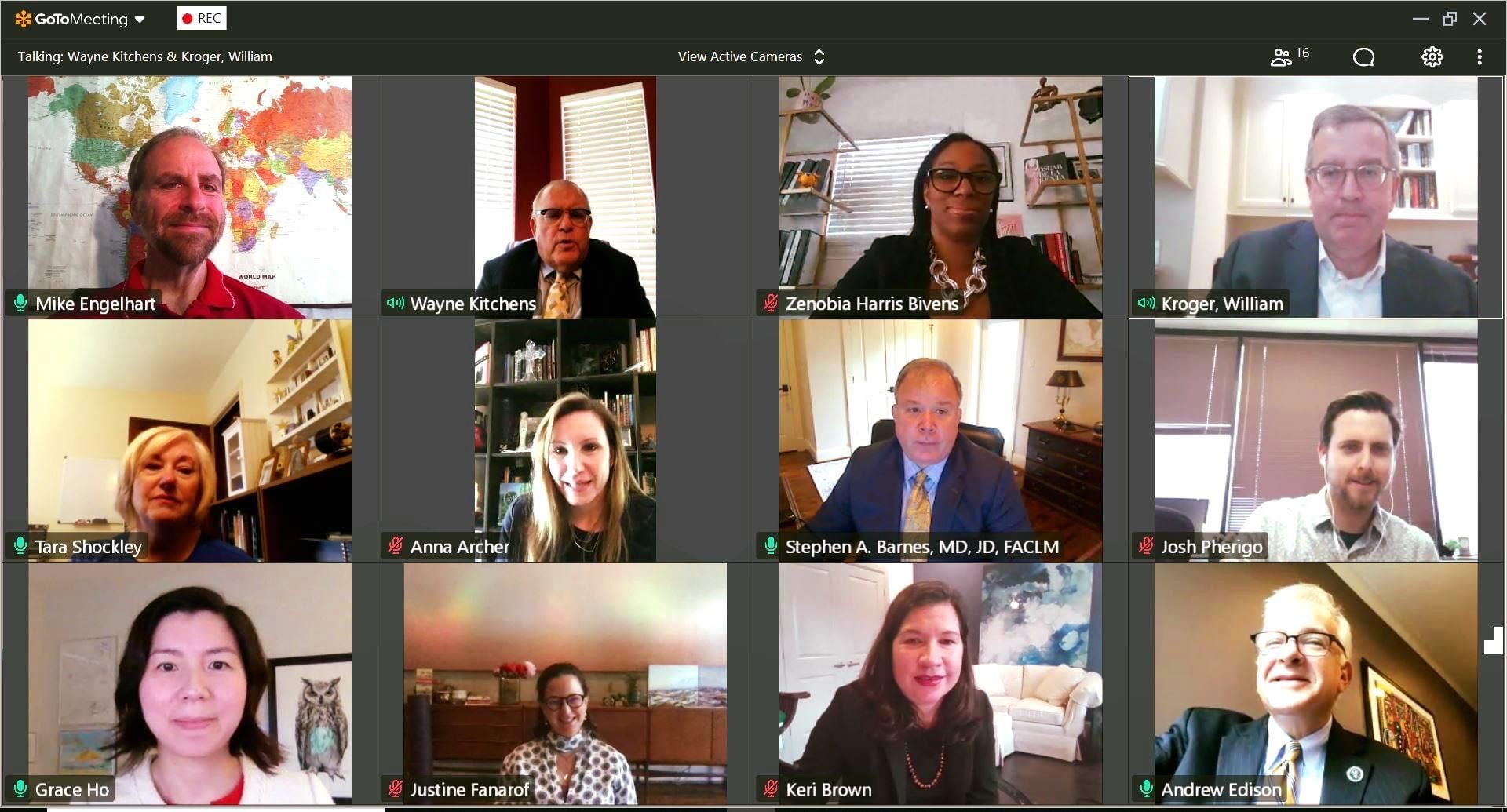 The roundtable discussion participants on GoToMeeting